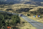 grizedale12 (109)
