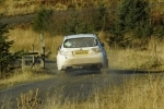 grizedale12 (11)