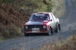 grizedale12 (60)