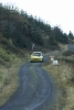 grizedale12 (96)